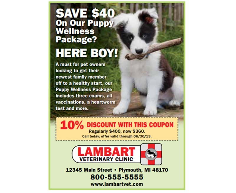 Print advertisement for Veterinarian Services