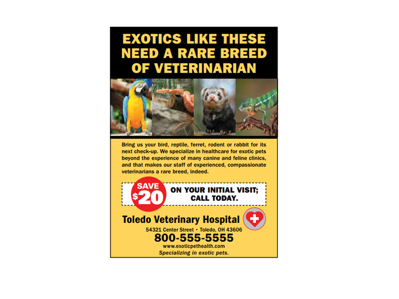Veterinary Print Advertisement